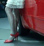 脚跟高衬衣鞋子白色 免版税库存图片