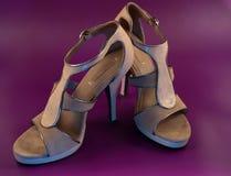 脚跟高鞋子 免版税库存照片