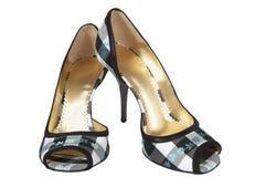 脚跟高鞋子 库存图片