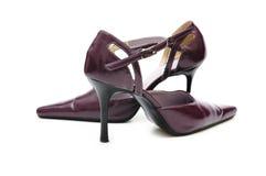 脚跟高isol穿上鞋子妇女 库存图片