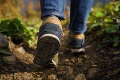 脚运动鞋秋天森林大后面 库存照片