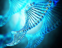 脱氧核糖核酸串 图库摄影