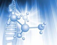 脱氧核糖核酸例证 免版税库存照片