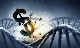 脱氧核糖核酸分子和美元的符号 免版税库存照片