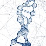 脱氧核糖核酸分子设计例证 免版税库存图片