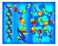 脱氧核糖核酸分子 免版税库存图片