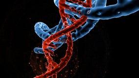 脱氧核糖核酸双重螺旋分子和染色体,基因突变,基因代码,3d例证 皇族释放例证