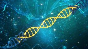 脱氧核糖核酸在三维空间的螺旋变革的动画 库存例证