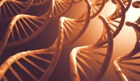 脱氧核糖核酸序列 库存图片