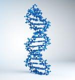 脱氧核糖核酸模型子线 免版税库存照片