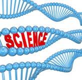 脱氧核糖核酸科学学会教育的词生物 库存照片