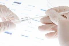 脱氧核糖核酸范例 免版税库存图片