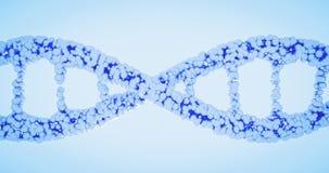 脱氧核糖核酸螺旋,脱氧核糖核酸子线,编辑染色体的基因,分解的螺旋,染色体编辑子线程序化的概念基因CRISPR 库存例证