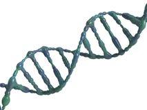 脱氧核糖核酸螺旋 免版税库存照片
