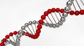 脱氧核糖核酸螺旋 免版税库存图片