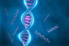 脱氧核糖核酸螺旋 库存照片