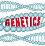 脱氧核糖核酸遗传学字 库存例证