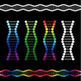 脱氧核糖核酸链子的标志在传染媒介clipart的 免版税库存图片