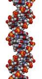 脱氧核糖核酸结构, B-DNA形式 库存照片