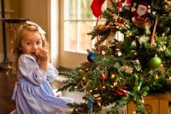 脸红在圣诞树 库存图片