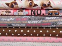脾气坏的猫对织品说不 库存照片
