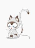 脾气坏的猫 免版税库存图片