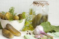 腌制嫩黄瓜被盐溶的黄瓜静物画 免版税库存照片