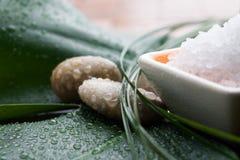 腌制槽用食盐 免版税库存图片