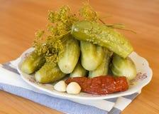 腌汁、辣椒、莳萝和大蒜在板材 免版税库存照片