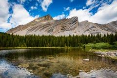 腌汁瓶子湖区域在夏天 免版税库存图片