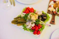 腌汁:盐味的蕃茄,黄瓜,圆白菜,蘑菇 免版税库存图片