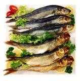 腌鱼 库存照片