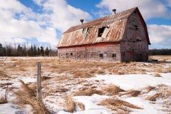 腐朽农业结构大农场的农田被忘记的谷仓 库存图片