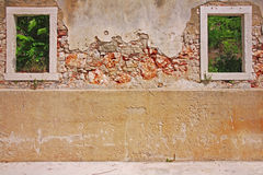 腐朽的墙壁 免版税库存图片