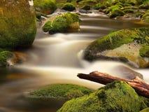 腐烂树干被阻拦在冰砾之间在明亮的被弄脏的波浪上的小河银行 大生苔石头在河中清楚的水  库存照片