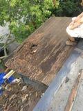 腐烂的屋顶 库存照片