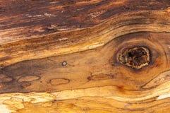 腐烂的木头, 图库摄影