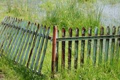 腐烂的篱芭 库存图片