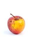 腐烂的苹果轻微 库存图片