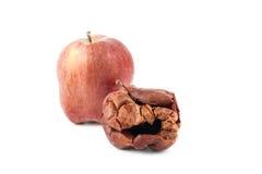 腐烂的苹果,被隔绝的背景 库存图片
