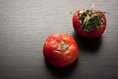 腐烂的蕃茄 免版税库存图片