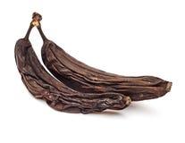 腐烂的香蕉 免版税库存图片