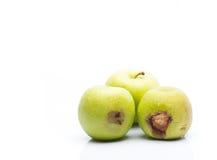 腐烂的绿色苹果 免版税库存图片