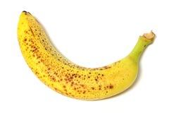 腐烂1个的香蕉 免版税图库摄影