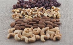 腰果、杏仁、核桃和榛子行在粗麻布织品 在核桃的选择聚焦 免版税库存照片