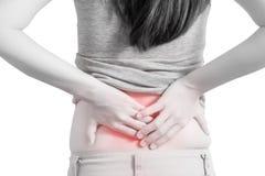 腰疼或痛苦的腰部在白色背景隔绝的妇女 在白色背景的裁减路线 图库摄影