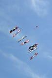 腾飞在天空的风筝 免版税库存照片