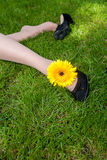 腿妇女一朵黄色花 免版税库存照片