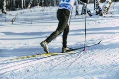 腿滑雪者运动员冬天桦树木头经典之作样式 库存照片