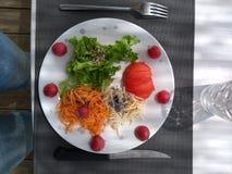 膳食 免版税库存图片